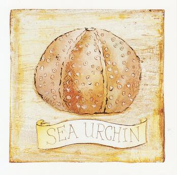 CARD TOPPER - Sea Urchin - Seaside themed 3.5