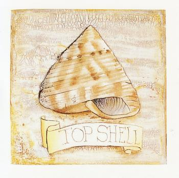 TOPPER - Top Shell - Seaside themed 3.5