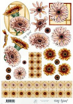 Mary Rahder - A4 120g Quality Craft Sheet  - Floral Mary Rahder