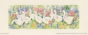Mason Ducks and Geese 2 with Red Flowers -- By Sandra Mason -- Print 10cm x 25.5cm . -Jacksons mail Order