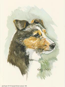 Jack Russell Dog by Kathryn Dalziel . Kathryn Dalziel