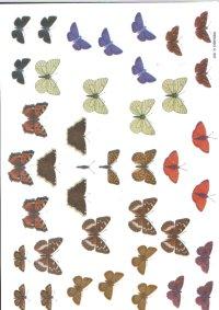 3d Easymake - Butterflies        507 3D Easymake Easy to follow instructions