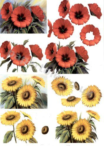 Poppies and Sunflowers     4169643 3D Easymake Easy to follow instructions