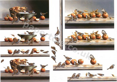 Sparrows and Apples     4169603 3D Easymake Easy to follow instructions
