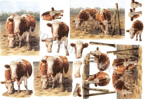 Country Cows     4169568 3D Easymake Easy to follow instructions
