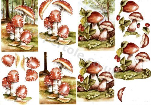 Toadstools     8215173 3D Easymake Easy to follow instructions