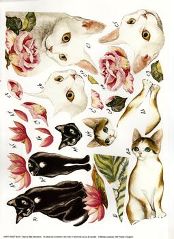 Beautiful Cats - A4 Step by Step . -Jacksons mail Order