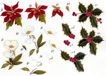 Christmas Flowers - A4 Step by Step *