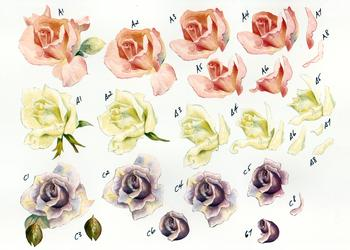 Pastel Roses - Step by Step Sheet No37 . *