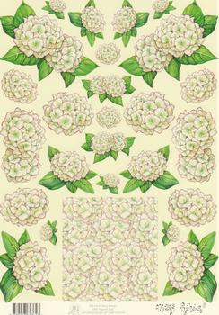 Mary Rahder - A4 120g Quality Multi Craft Sheet  2608 . Mary Rahder