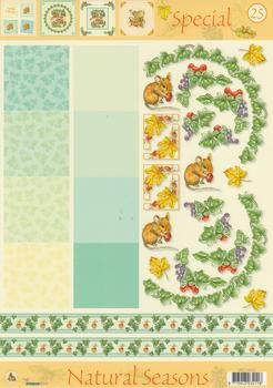 A4 Christmas step by step sheet - Natural Seasons . FANTASTIC OFFER!!!
