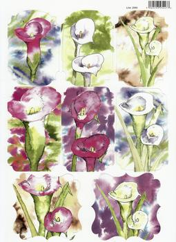 A4 Calla Lilies Water Colour Diecut Sheet 2069 . *