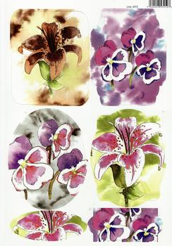 Painted Water Colour Flowers - Pansies & Lillies 2072 . -