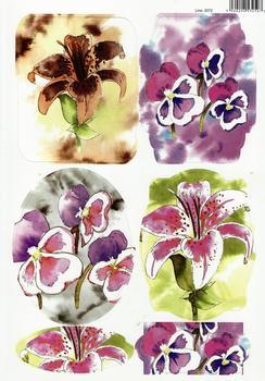 A4 Pansies & Lilies Water Colour Diecut Sheet 2072 . *