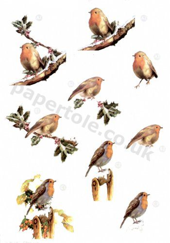 Robins - Die Cut Sheet  430 3d Card Art papertole.co.uk