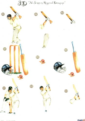 Male Die Cut Sheet - Cricket 3 push out projects  450 Die Cuts