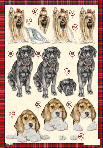 Die Cut Dogs - Long Haired Yorkshire Terrier - Labrador & Beagle - 615 Die Cuts papertole.co.uk