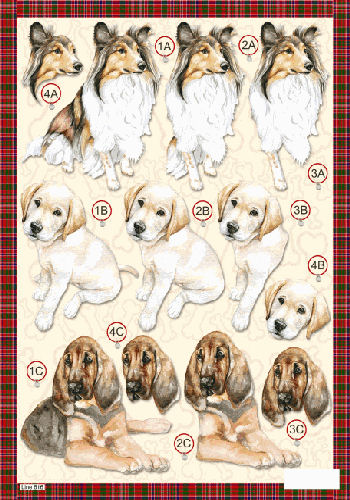 Die Cut Dogs - Collie Dog - Labrador & Bloodhound - 616 Die Cuts papertole.co.uk
