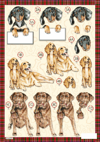 Die Cut Dogs - Dachshund Puppy Golden Retriever & Chocolate Labrador - 617 Die Cuts papertole.co.uk