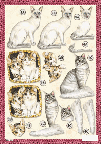 Die Cut Cats - Siamese Cat 620 Die Cuts papertole.co.uk