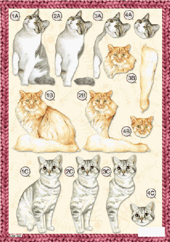 Die Cut Cats - Grey and White Cat  622 - OUT OF STOCK Die Cuts papertole.co.uk
