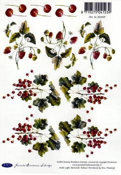 A5 Cherry Tree FANTASTIC OFFER!!!
