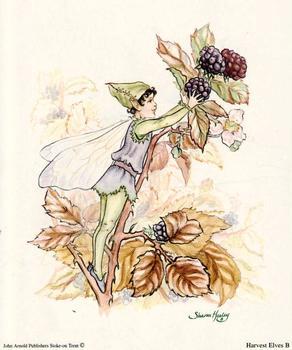 Purple & Green Blackberry - Harvest Elves Print B- 5