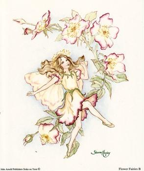 Dancing Flower Fairies Print B - 5