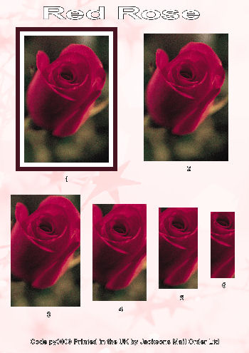 Pyramid Sheet - Red Rose 3D Card Art Photo Pyramid