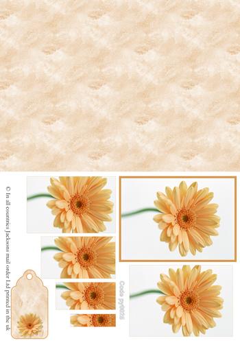 Floral Pyramid Combi Sheet 2 3d Card Art RRP 75p