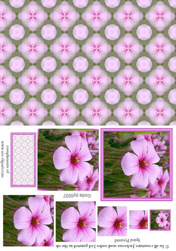 Floral Pyramid Combi Sheet 4 3d Card Art RRP 75p