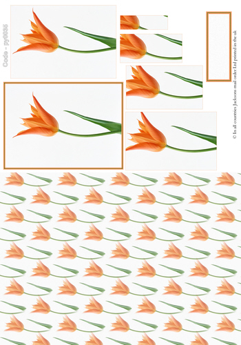 Floral Pyramid Combi Sheet 5 3D Card Art RRP 75p