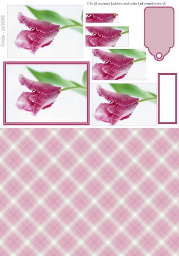Floral Pyramid Combi Sheet 6 3D Card Art RRP 75p