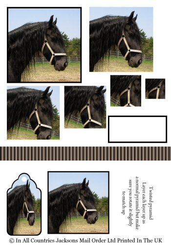 Twisted Pyramid - Black Horse 3d Card Art RRP 75p