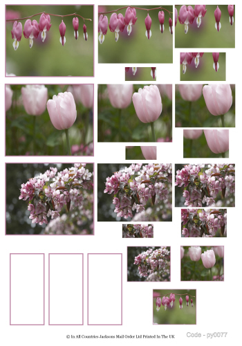 Multi Pyramid Sheet - Photo Nouveux Floral 3d Card Art RRP 75p