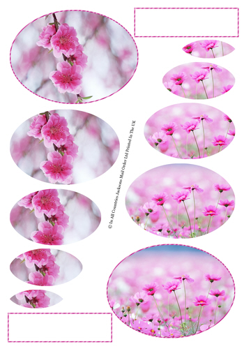 Multi Oval Pyramid Sheet - Floral 3D Card Art RRP 75p
