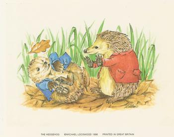The Hedgehog by L Hinton Jacksons