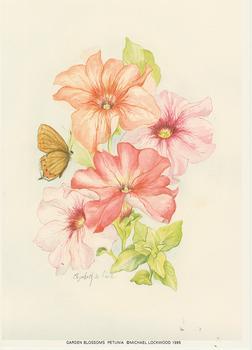 Garden Blossoms  Petunia 5