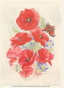 Garden Blossoms Poppy & Morning Glory 5