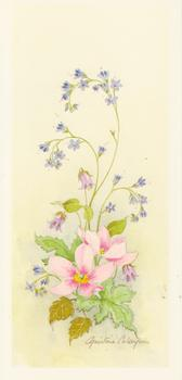 Spring Flowers 6 - Pink Flower by Christine Coleyan -Jacksons mail Order
