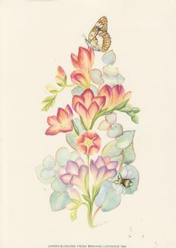 Garden Blossom FRESIA 5