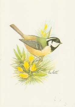 Bird Print by Eve Coote *** 5