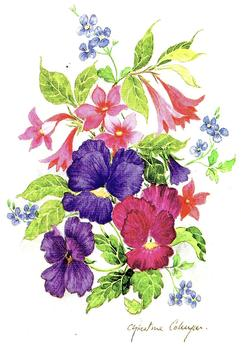 Spring Flowers - 4