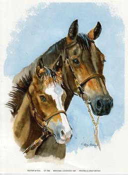 Mother & Foal - 6