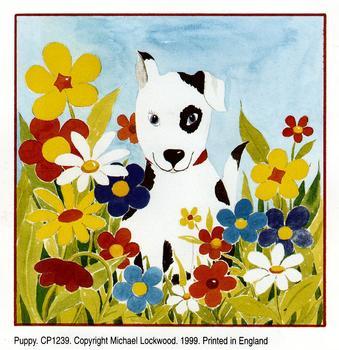 Puppy -  4