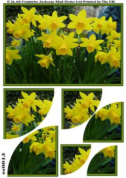 Daffodil Corner Side Stacker Sheet .