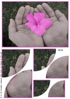 Floral Bloom Corner Stacker Sheet . FANTASTIC OFFER!!