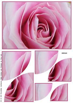 Beautiful Rose Bloom Corner Stacker Sheet . FANTASTIC OFFER!!