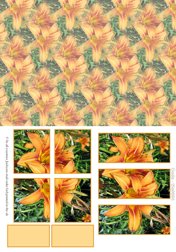 Large Tile Sheets - Floral 4 3D Card Art RRP 75p