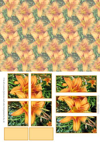 Large Tile Sheets - Floral 4 3D Card Art RRP 75p